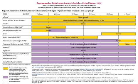 Jadwal Vaksinasi Dewasa 2016 Rekomendasi ACIP - 19 Tahun - 65 Tahun keatas.png